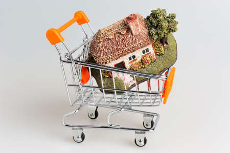 possession: Model of house in the shopping cart on gray background