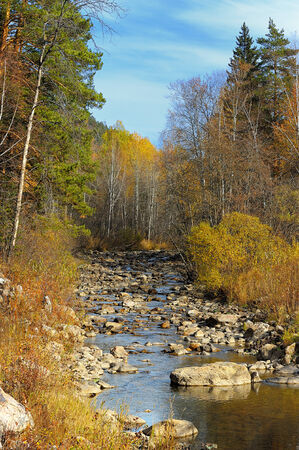 Mountain river in the autumn forest photo