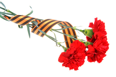 anti fascist: Three red carnations tied with Saint George ribbon isolated on white Stock Photo