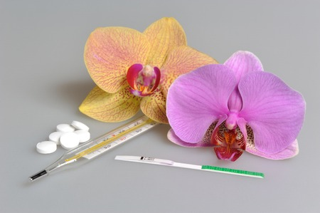 Pills, mercury thermometer and ovulation test with two orchid flowers on gray