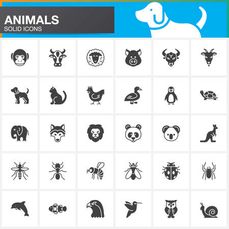 Animals vector icons set, modern solid symbol collection, filled pictogram pack isolated on white. Signs, logo illustration Illustration