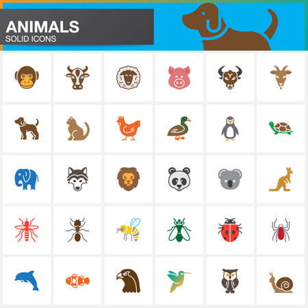 Animals vector icons set, modern solid symbol collection, filled pictogram pack isolated on white. Colorful signs, logo illustration