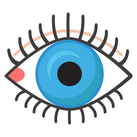 Human eye icon, vector illustration flat style design isolated on white. Colorful graphics