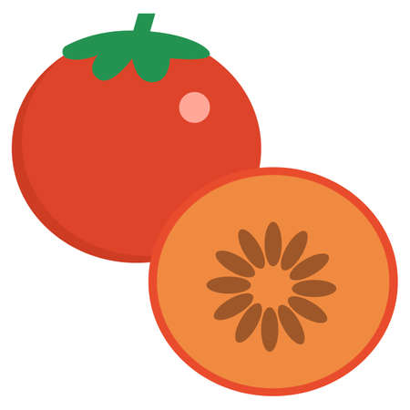 Persimmon fresh juicy exotic fruit icon, vector illustration flat style design isolated on white. Colorful graphics