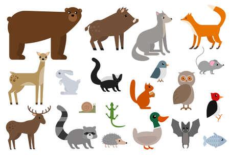 Wild animals elements collection, flat icons set, Colorful symbols pack contains - Fox Wolf Bear Deer Elk Boar Owl Hedgehog Squirrel Mouse Bat Batman. Vector illustration. Flat style design