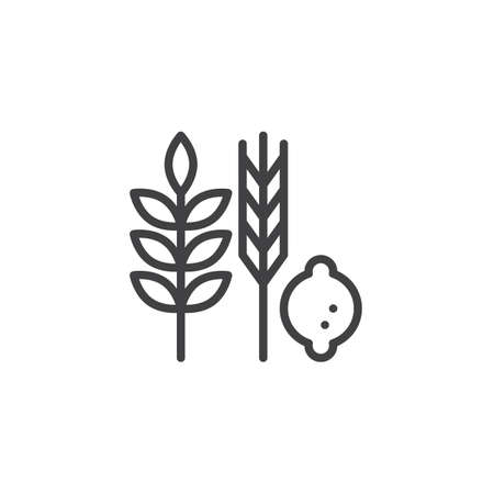 Hebrew Species outline icon. linear style sign for mobile concept and web design. Jewish holiday food simple line vector icon. Symbol, logo illustration. Pixel perfect vector graphics