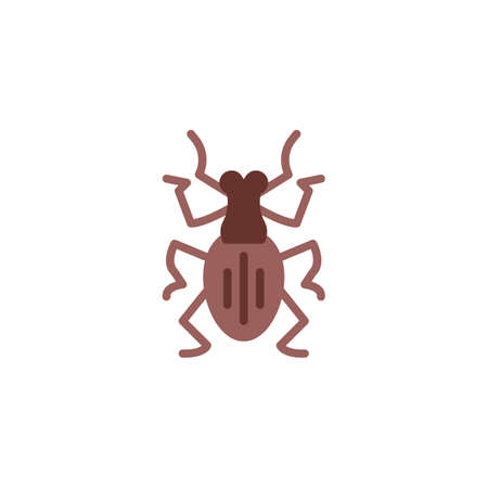 Weevil insect flat icon, vector sign, colorful pictogram isolated on white. Weevil pest symbol, logo illustration. Flat style design