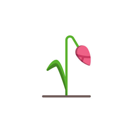 Withered flower flat icon, vector sign, Tulip flower colorful pictogram isolated on white. Symbol illustration. Flat style design