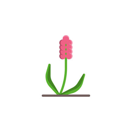 Spring flower flat icon, vector sign, Growing plant colorful pictogram isolated on white. Symbol illustration. Flat style design
