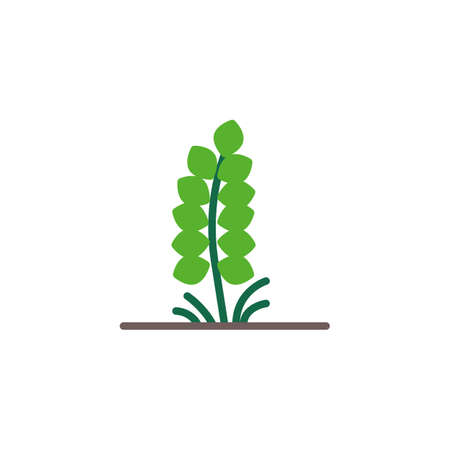 Grain spike flat icon, Spikelet vector sign, Plant with leaves colorful pictogram isolated on white. Symbol illustration. Flat style design Illustration