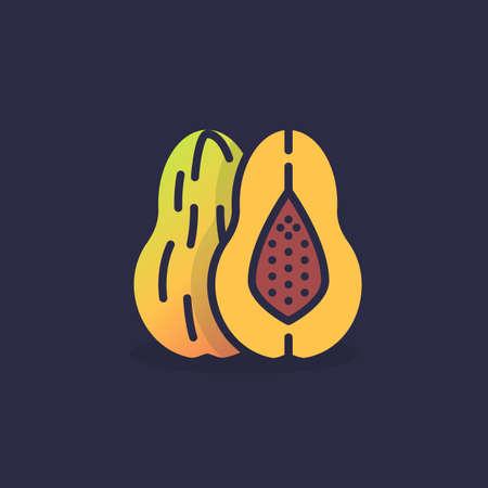 Icône plate de fruit de melon, signe de vecteur, pictogramme coloré. Symbole, illustration du logo. Conception de style plat