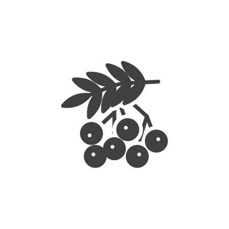 Rowan berries vector icon. Forest berry filled flat sign for mobile concept and web design. Rowan branch glyph icon. Thanksgiving symbol, logo illustration. Vector graphics 일러스트