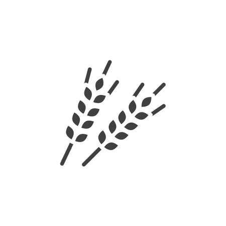 Wheat spikes vector icon. filled flat sign for mobile concept and web design. Ear of wheat glyph icon. Agriculture symbol, logo illustration. Vector graphics Reklamní fotografie - 137731198