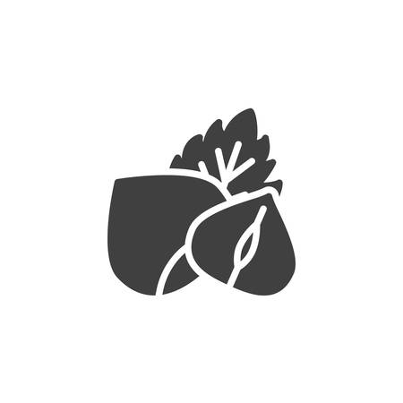 Hazelnut with leaf vector icon. filled flat sign for mobile concept and web design. Peeled hazelnut glyph icon. Symbol, logo illustration. Vector graphics 일러스트