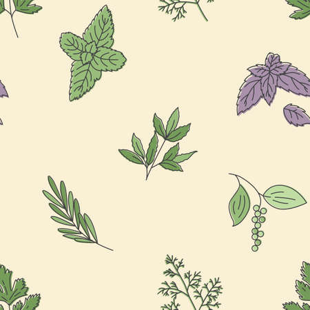 Herbs and condiments icons pattern. Herbs leaves seamless background. Seamless pattern vector illustration Ilustração