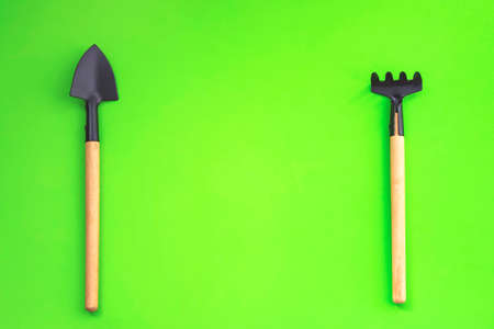 Home gardening. Miniature gardening tools on green background. Top view. seedling, cultivation. agriculture, horticulture. Copy space Zero waste Reklamní fotografie
