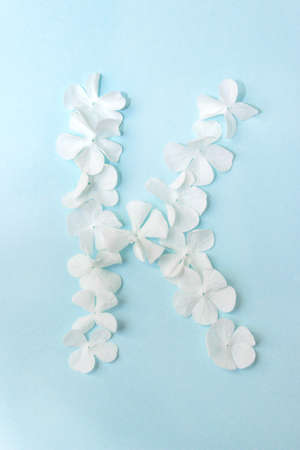 Flower Alphabet - K. Letter made from live flowers on light blue background