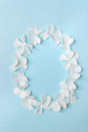 Flower Alphabet - O. Letter made from live flowers on light blue background
