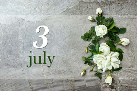 July 3rd. Day 3 of month, Calendar date. Stylish roses flat lay. White roses border on pastel gray background with calendar date. Autumn month, day of the year concept Summer