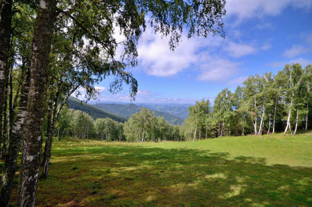 View of the fields and forests around the mountain Mandzherok. Russia, Altai Republic Reklamní fotografie - 111740517