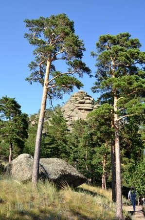 In the mountain forest, State National Natural Park Burabai, Kazakhstan Редакционное