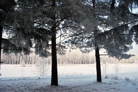 Winter Siberian city park, Omsk region