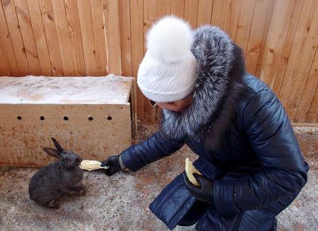 OMSK REGION, RUSSIA - FEBRUARY 2015: Woman feeding rabbit in the zoo Holiday Village Skazka, 12 february 2015