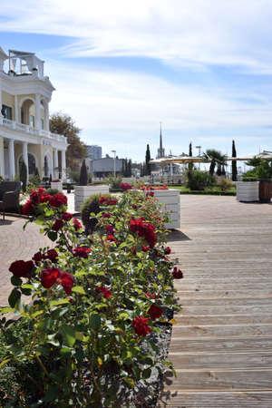 SOCHI, RUSSIA - SEPTEMBER 29, 2016: View of a beautiful place Sochi, Russia Редакционное