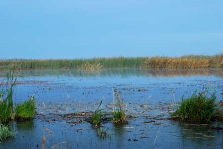 Morning on Lake Big Corner. Omsk region, Siberia, Russia Stock fotó - 129259573