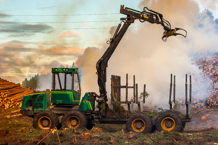 Forest cutting, burning of forest waste, smoke, fire. Archivio Fotografico