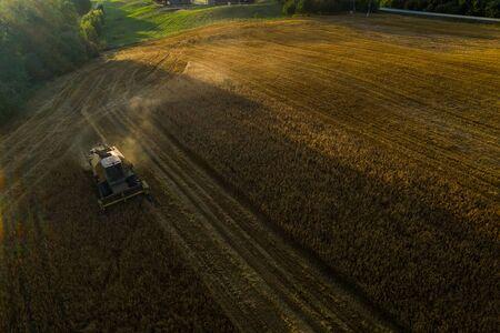 Harvester machine on the field. Green trees. Field of ripe wheat. Farmers' work. Banco de Imagens - 129015023
