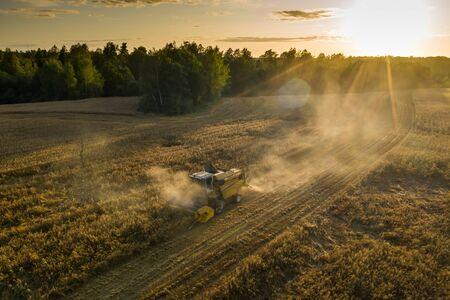 Harvester machine on the field. Green trees. Field of ripe wheat. Farmers' work. Banco de Imagens - 129015017