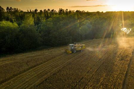 Harvester machine on the field. Green trees. Field of ripe wheat. Farmers' work. Banco de Imagens - 129015086