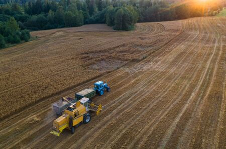 Blue tractor with trailers. Harvester. Field of ripe wheat. Farmers' work. Banco de Imagens - 129015098