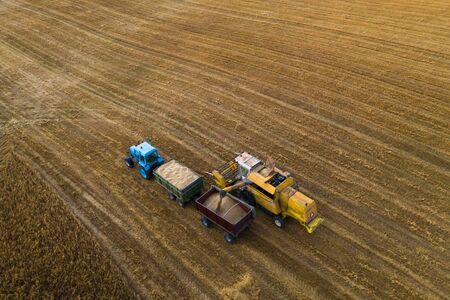Blue tractor with trailers. Harvester. Field of ripe wheat. Farmers' work. Banco de Imagens - 129015355