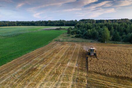 Harvester machine on the field. Green trees. Field of ripe wheat. Farmers work. Banco de Imagens