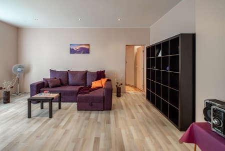 Cozy sofa. Opened door. Shelves. Decorative flowers. Blurred picture.