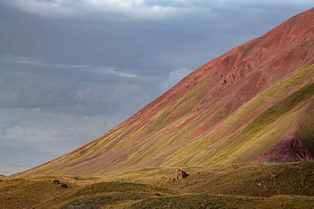 Close-up of the slope of the mountain with red sand. Grazing horses. Kyrgyz nature. Banco de Imagens