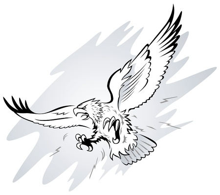 Spread Winged Eagle with Claws  Vector