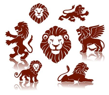 lion drawing: Una serie di leoni illustrazioni