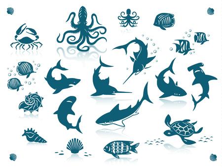 pez martillo: La vida del mar y los peces conjunto de iconos. Aislado contra un fondo blanco con reflejos Vectores