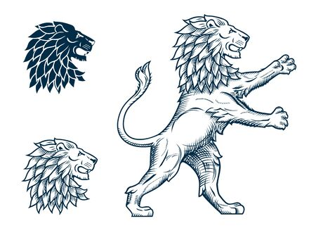 Lion and Lions Head Illustration