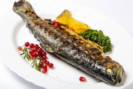 Grilled trout on a white plate, decorated with red currants, lemon and herbs. Close up. Side view 版權商用圖片