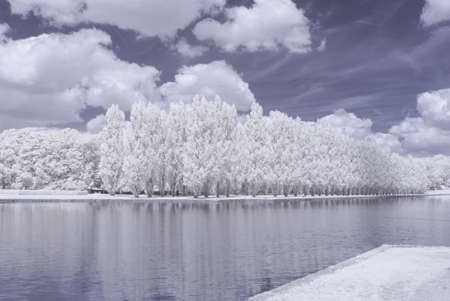 infrared: Sceaux park in infrared Stock Photo