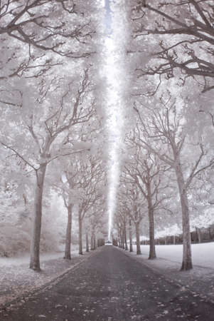 Sceaux park in infrared Stock Photo