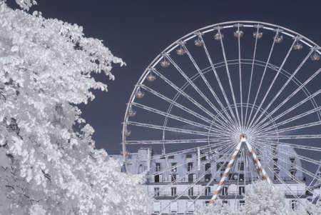 Tuileries garden in infrared (Paris)
