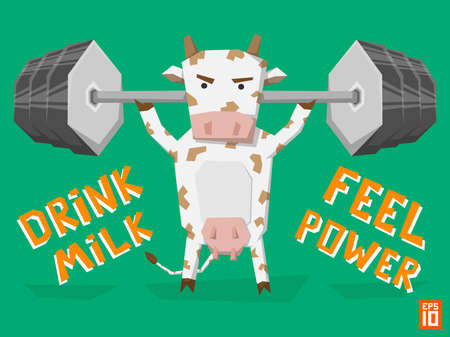 udders: Vector strong cow lifts weight bar. Illustration with slogan drink milk feel power.