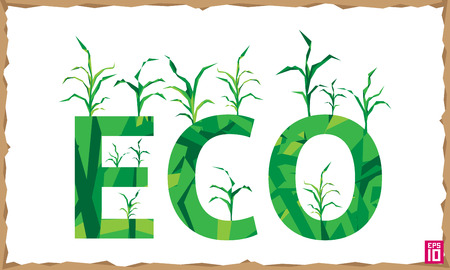 maize: Vector think eco illustration with growing corn (maize). Illustration
