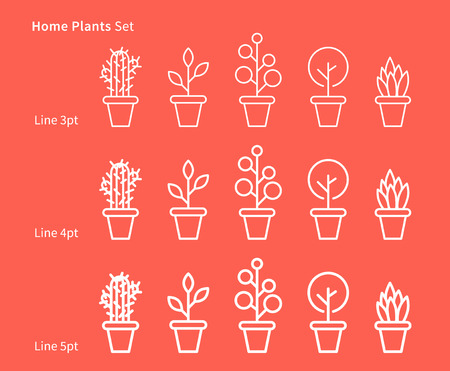 simple: House plants white linear vector illustration with plants, pots, cactus, leaf, leaves. Natural ecology, ecological house plants creative graphic concept. Natural eco decorative house plants set.