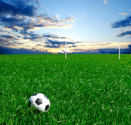 soccer ball on a green lawn photo